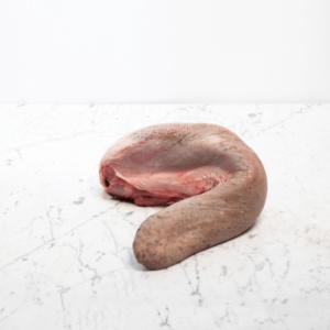 Lingua di Scottona | Luciano Bifulco